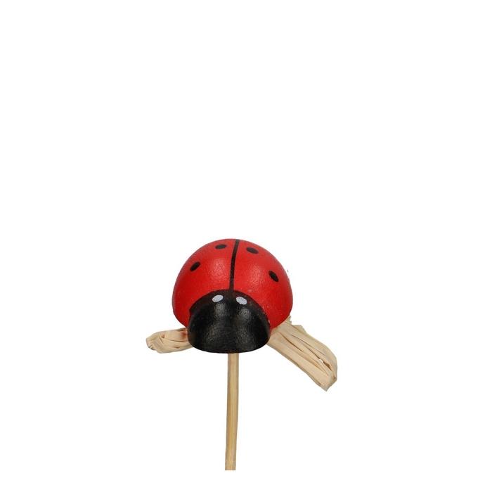 <h4>Bijsteker 22cm Kever hout 3cm</h4>