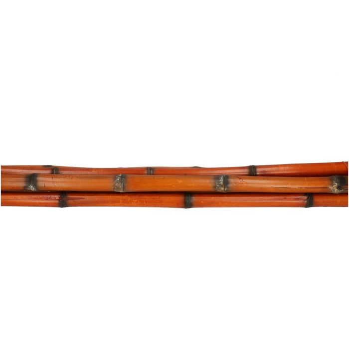 <h4>Dried articles Bamboostick burned 90cm x5</h4>