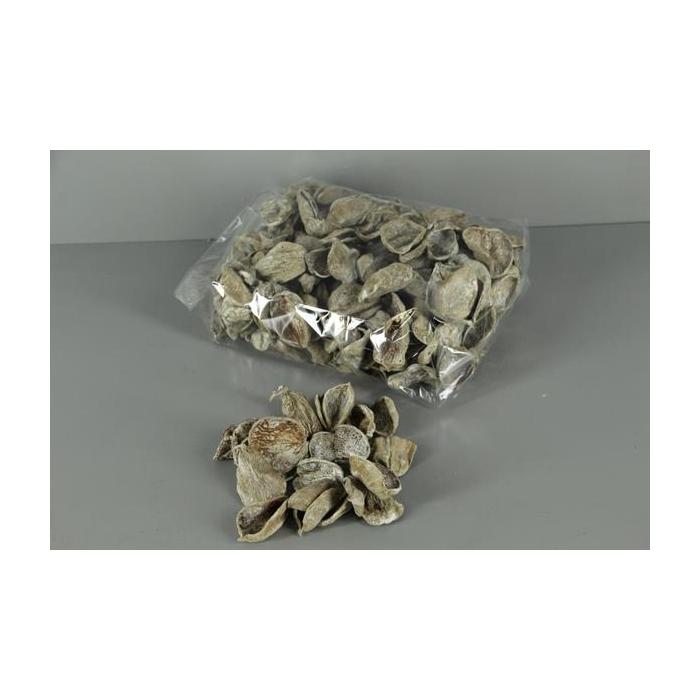 <h4>Land Lotus Petal Frosted(500g)</h4>