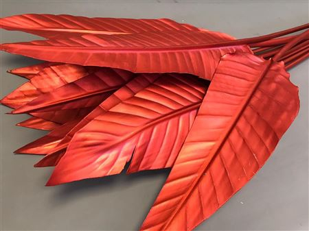 <h4>STRELITZIA BLAD PAINTED $LUXURY RED</h4>