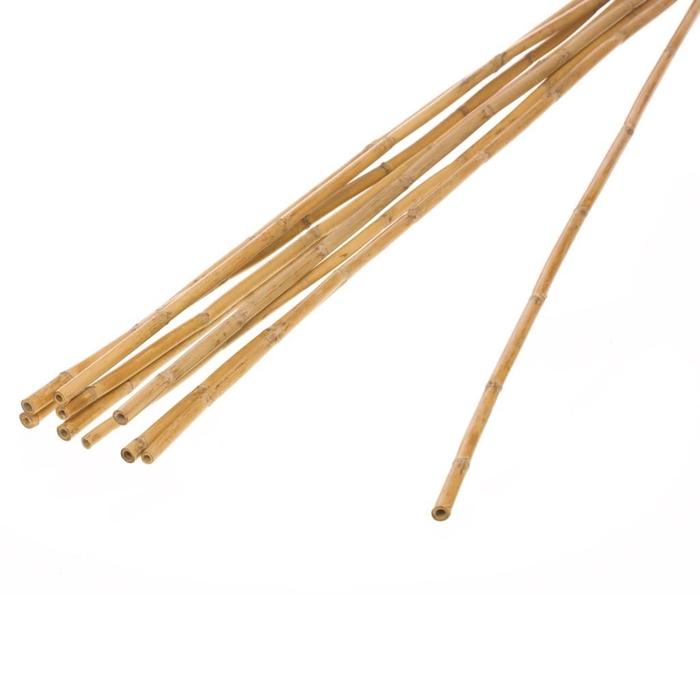 <h4>Bamboo stick natural</h4>