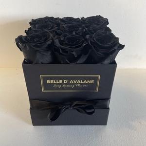 Box vk 15cm zwart-zwart