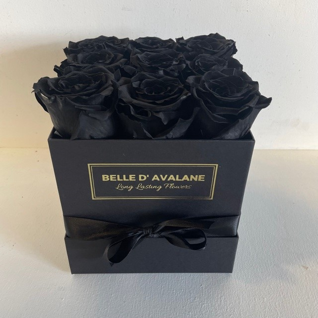 <h4>Box vk 15cm zwart-zwart</h4>