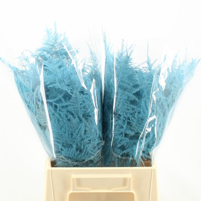 <h4>1e Veren Klb H% Turquoise</h4>