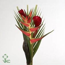 Bouquet 1 H (mg)