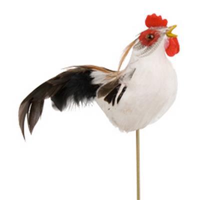 <h4>Pique Coq avec des plumes 8x10cm+ bâton 50cm blanc</h4>