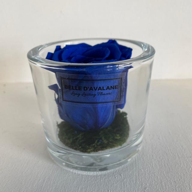 Cilinder d9x8h blauwe roos
