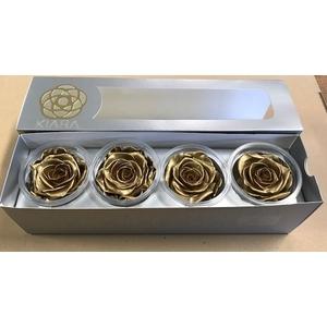 Rose Gold Super(4)