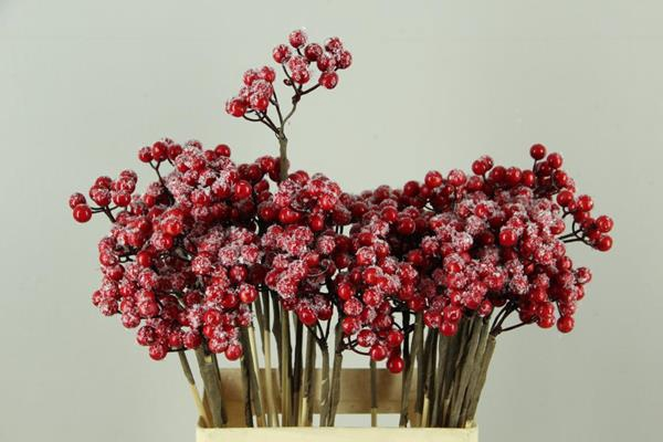 <h4>Stick Berry Bunch S Red+ice</h4>