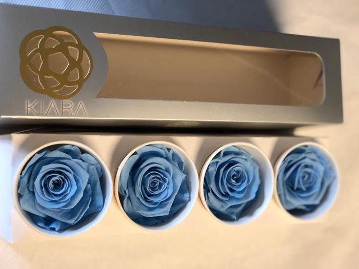 <h4>Super Rose Baby Blue (4)</h4>