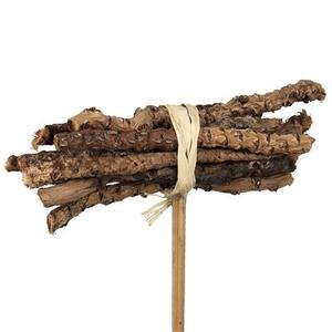 Pique Coco bunch + 50cm bâton