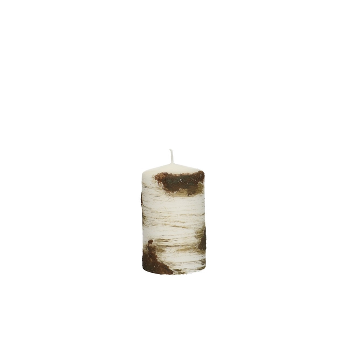 <h4>Candle Cylinder birch tree d06*10cm</h4>