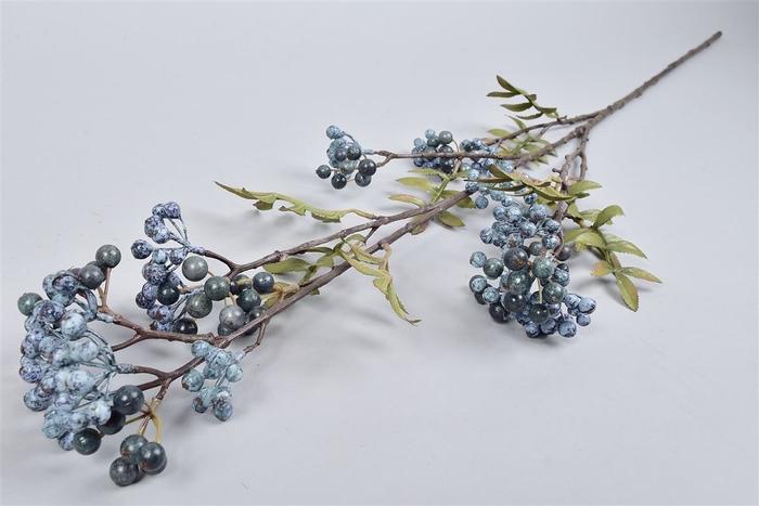 <h4>Silk Pyracanthatak Blauw/grijs 110cm</h4>