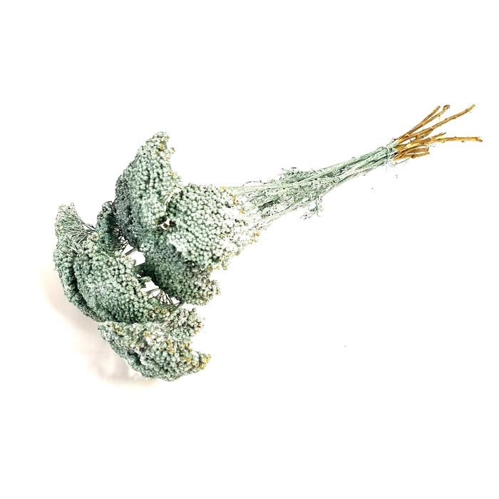 <h4>Achillea per stem Metallic Antique Green</h4>