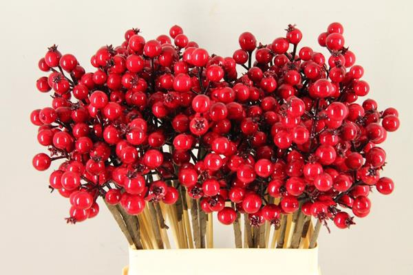 <h4>Stick Berries Rose Hips Red</h4>