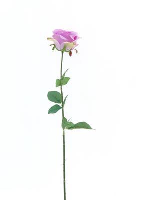 <h4>Af Rose Sco Lavender</h4>