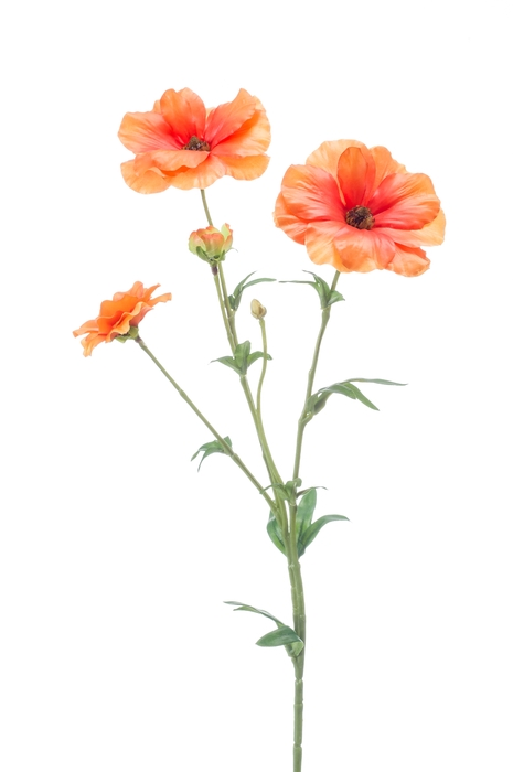 <h4>SILK RANUNCULUS JAPANESE 55CM ORANGE 421942</h4>