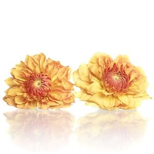 Dahlia orange 5-5,5cm