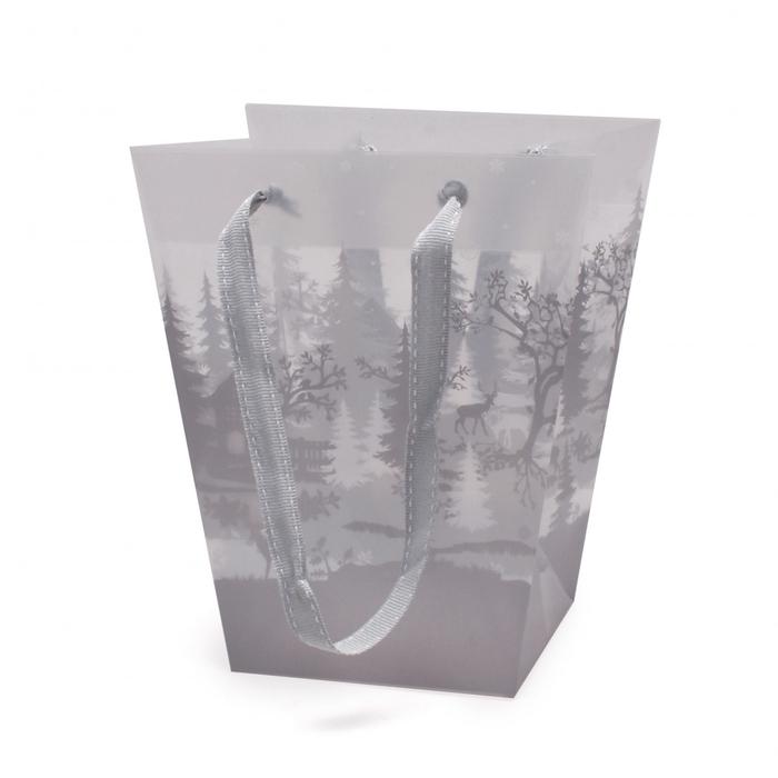 <h4>Christmas Bag winter 17/11*20cm</h4>