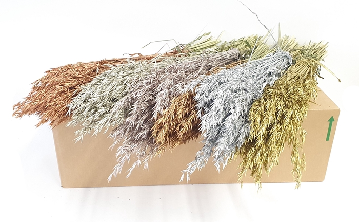 <h4>Avena per bunch mixed colours metallic</h4>