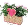Bag Duo Beloved carton 26x10,5x12cm pink