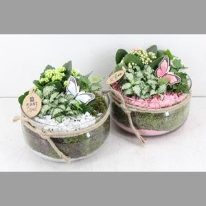 arr. PL - Glas bose laag touw 338 - roze/wit