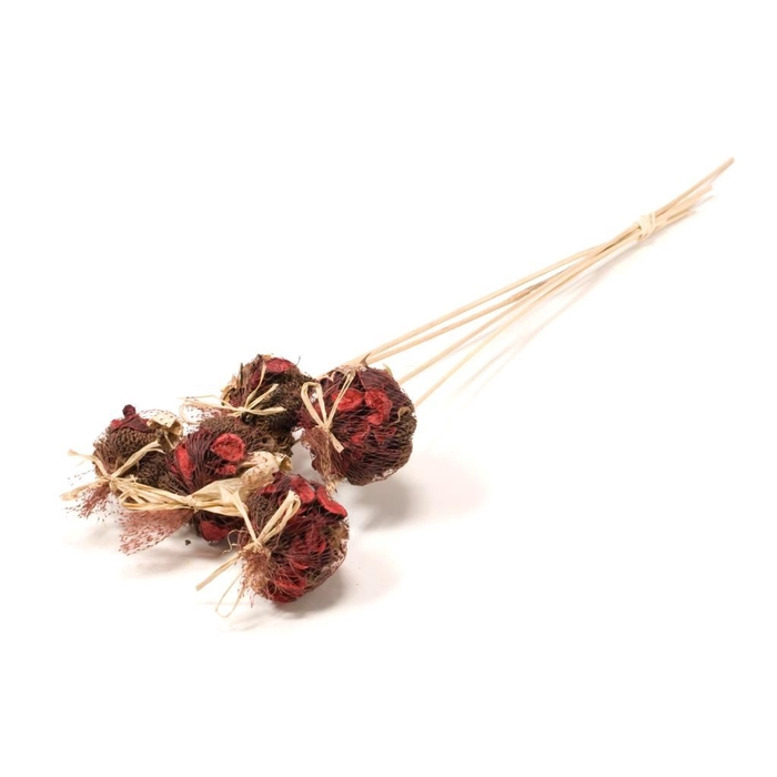 <h4>DRIED FLOWERS - POTPOURRI MIX O/S 10P RED</h4>