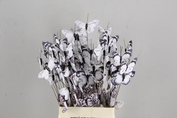 <h4>Stick Butterfly Bouquet White</h4>