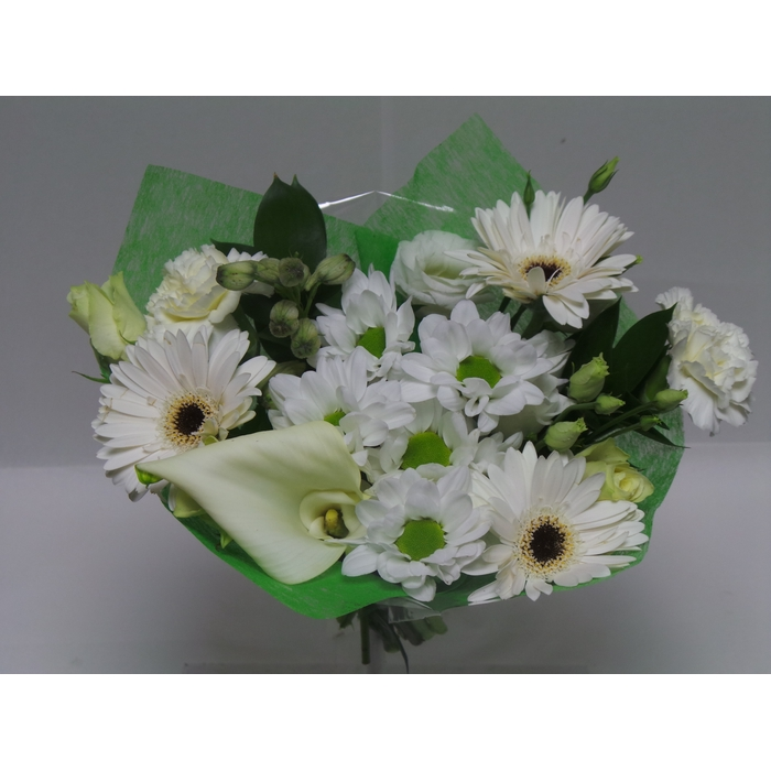 <h4>Bouquet Shorties White</h4>