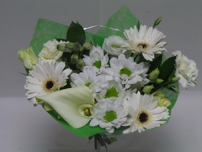 <h4>Bouquet Shorties White</h4>