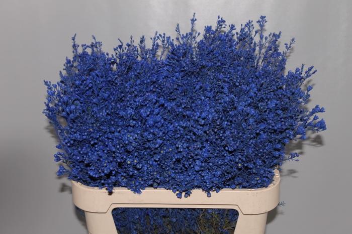 <h4>Wax Blauw donker</h4>