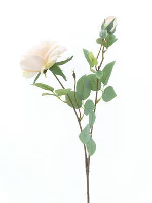 <h4>Af Rose Spray Cream</h4>