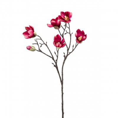<h4>Silk Magnolia spray 65cm</h4>