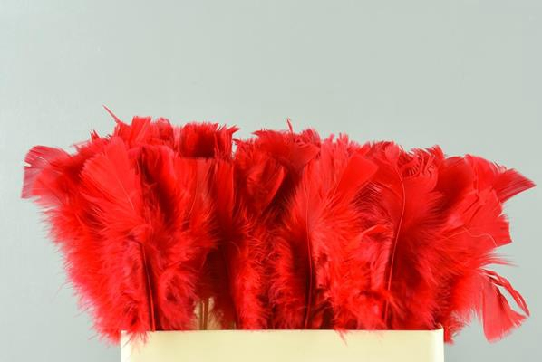 <h4>Stick Feather Red</h4>