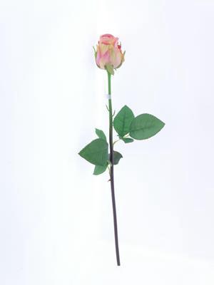 <h4>Af Oxford Rose Bud Pink</h4>