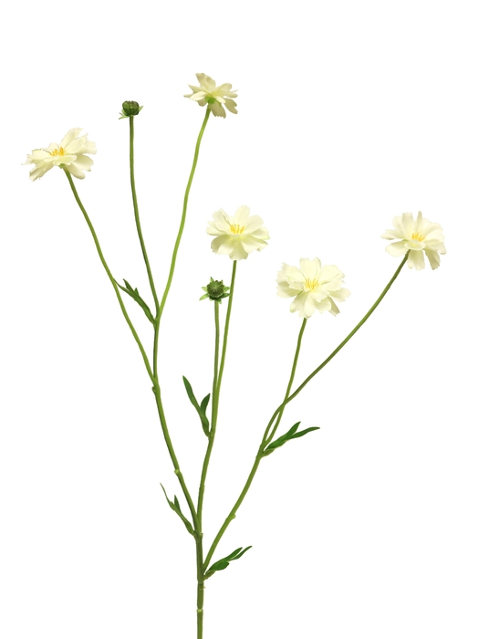 <h4>SILK CENTAUREA MADELON CREAM 64CM 12894-0</h4>