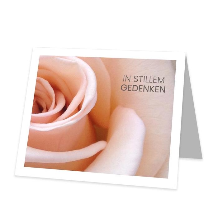 <h4>Labels Kaart 09*8cm x12 In stillem</h4>