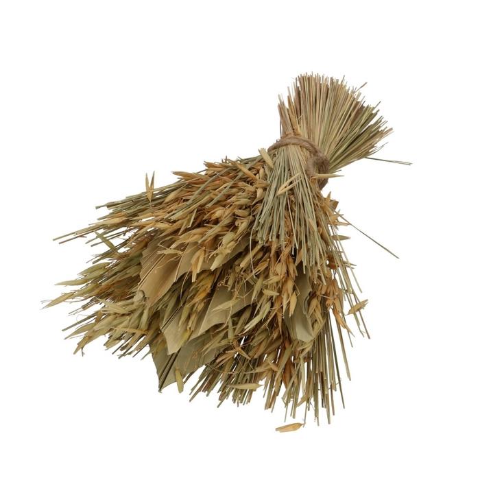 <h4>Droogbloem Palmspear 25*35cm</h4>