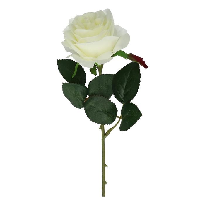 <h4>Silk Roos 45cm</h4>