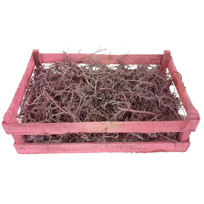 <h4>Bonsai branches in box (60-39-18) Frosted pink</h4>