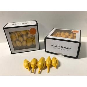 Tulp m geel (100)