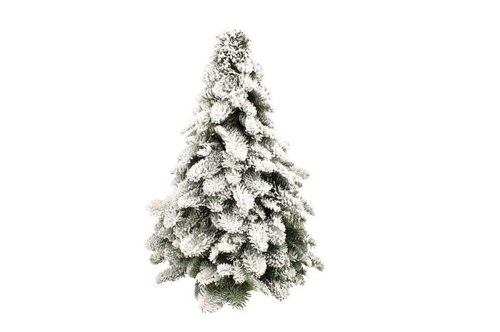 <h4>Kerstboom Nobilis Snow 40</h4>
