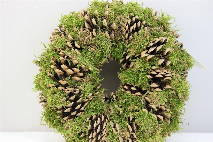 <h4>Krans Pine Green Moss 28cm</h4>