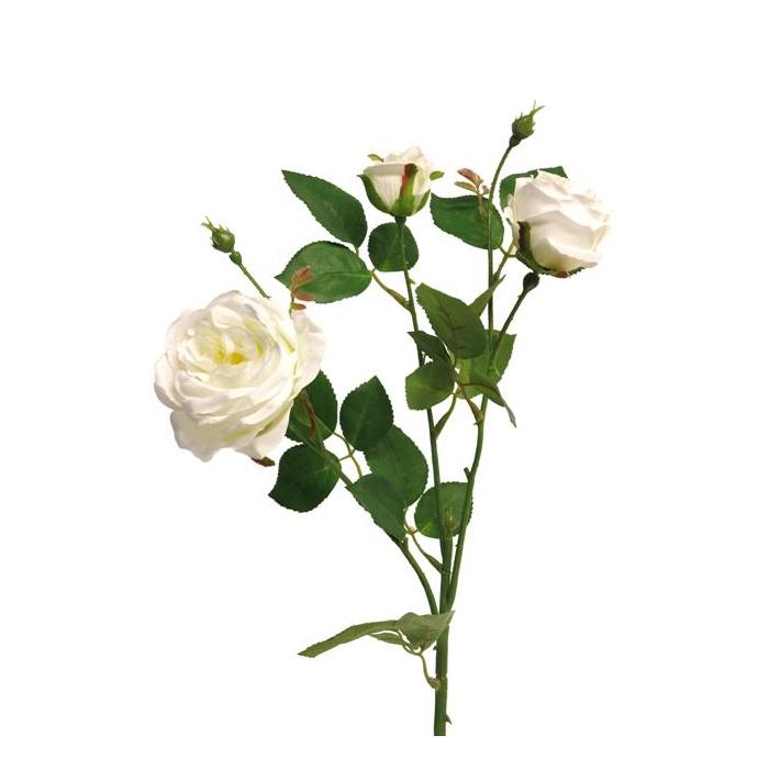 <h4>SILK FLOWERS - ITALIAN ROSE SPRAY X3 CREAM 61CM</h4>