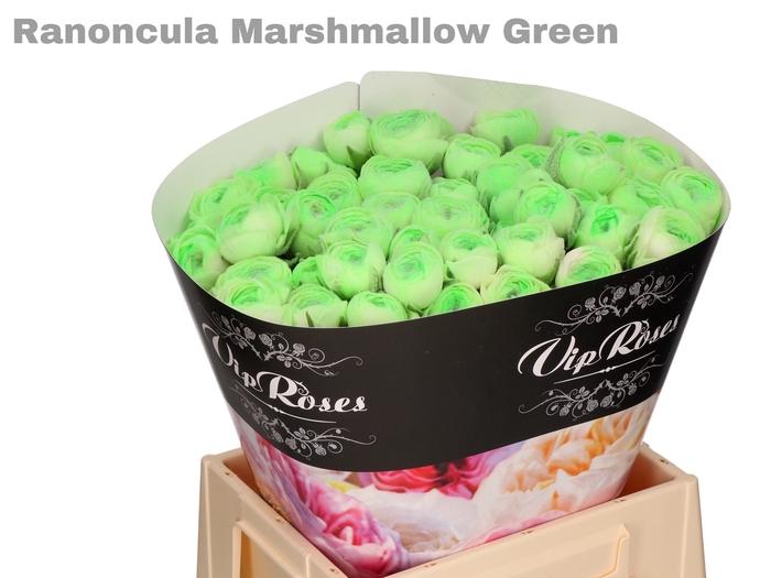 <h4>RAN OV MARSHMALLOW GREEN EXTRA</h4>