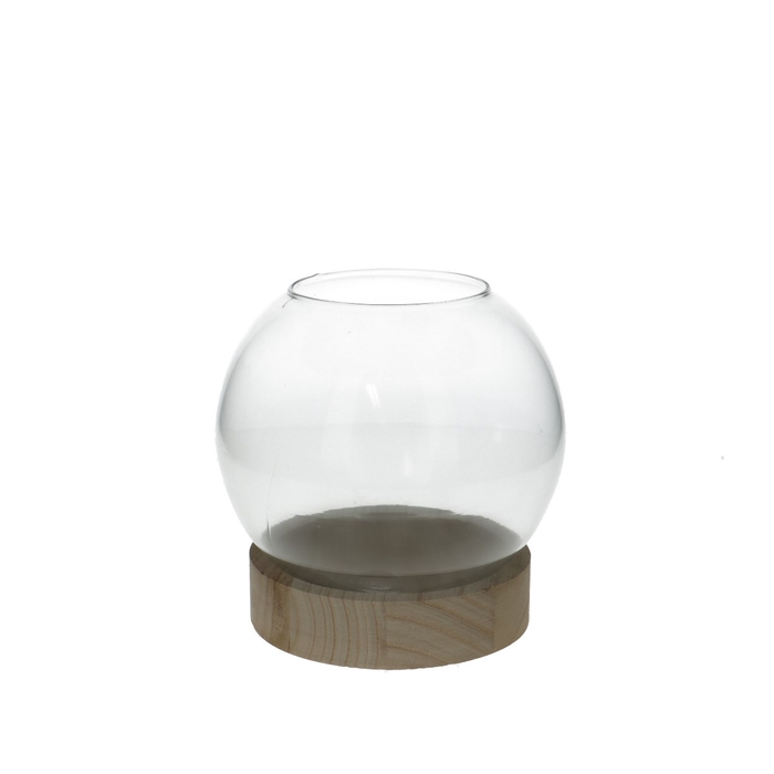 <h4>Glas Kogelvaas+voet hout d13*16cm</h4>
