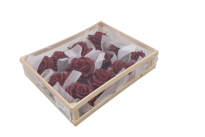 <h4>Wax Rose Red</h4>