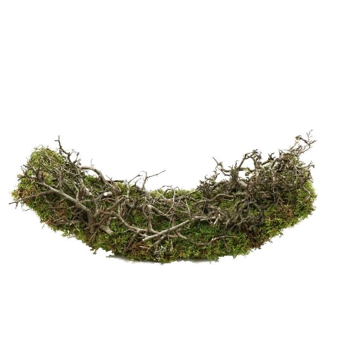 <h4>Allerheiligen Basis bonsai+boot d50*20cm</h4>