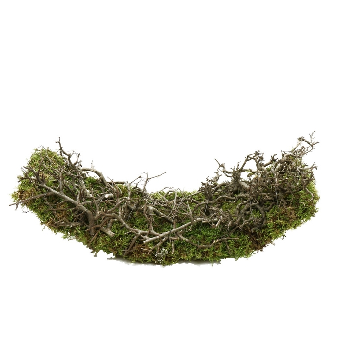 <h4>Dried articles Basic bonsai+boat d50*20cm</h4>