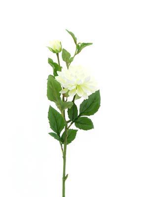 <h4>Af Dahlia Spray White</h4>